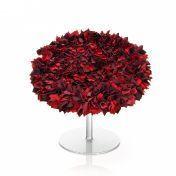 Moroso: Hersteller - Moroso - Bouquet Sessel