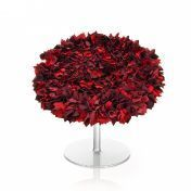 Moroso: Brands - Moroso - Bouquet Armchair