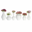Schönbuch: Categories - Accessories - Blossom Vase Set
