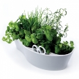 Royal VKB: Categories - Accessories - Herb Garden Cup