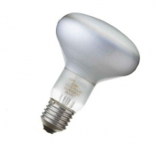 QualityLight: Marcas - QualityLight - AGL E27 globe R95 75W