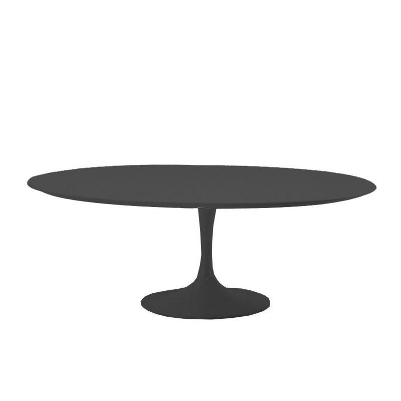 Table basse ovale pied central - Table ovale design pied central ...