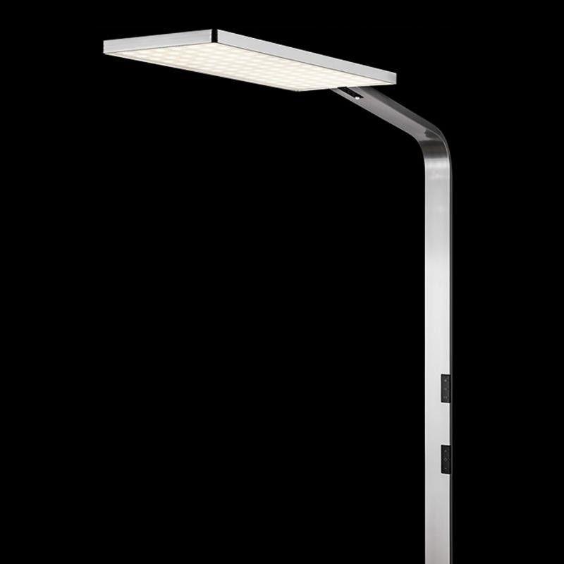 force one led floor lamp nimbus. Black Bedroom Furniture Sets. Home Design Ideas